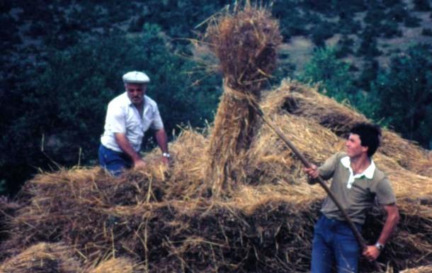 Mehmet Kabadayi ve Amcasi Fehmi Kabadayi 1983.jpg